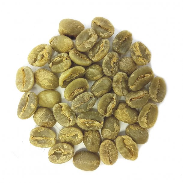 Kenya AA Top Gikanda Kangocho, Grønne Bønner 1000 gram