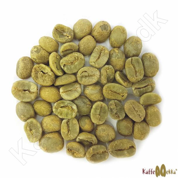 Costa Rica Cumbre Tarazzu shb, Grønne Bønner 1000 gram