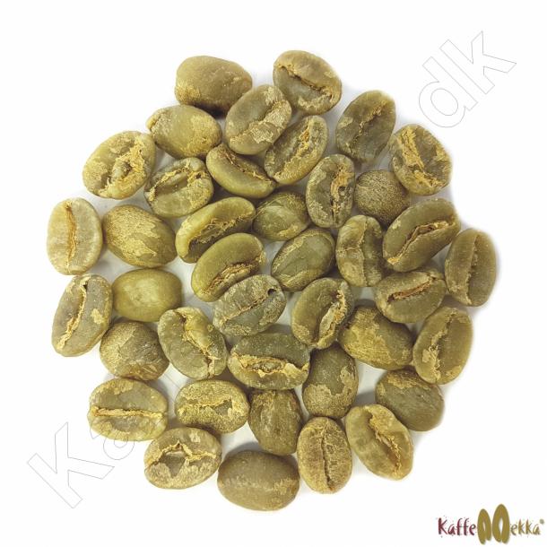Kenya AA Top, Grønne Bønner 1000 gram