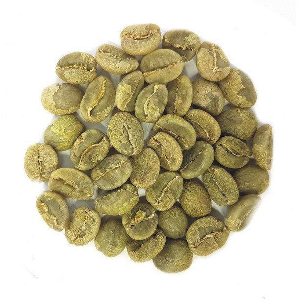 Zimbabwe AA Plus Pezuru, Grønne Bønner 1000 gram