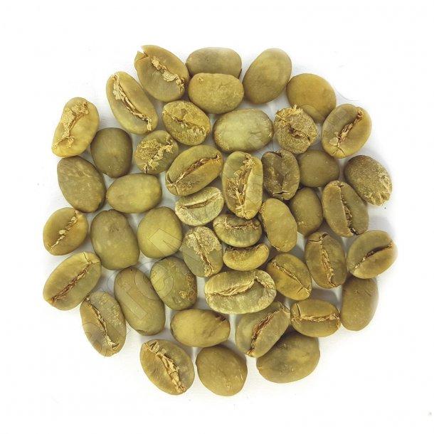 Sulawesi Toraja Kalossi Grade 1, Grønne Bønner 1000 gram