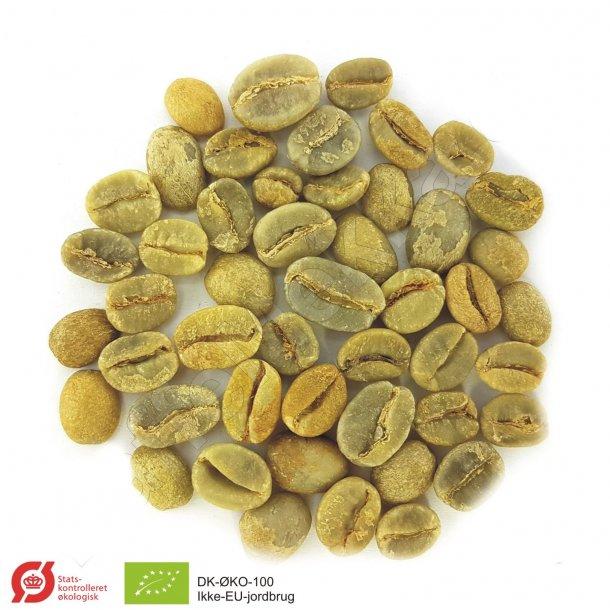 Super Aroma Økologisk, Grønne Bønner 1000 gram