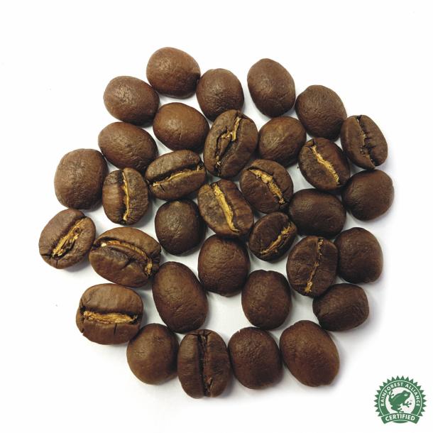 Tanzania Shangri-La  Espresso